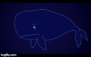Poopie the whale! | image tagged in gifs | made w/ Imgflip images-to-gif maker