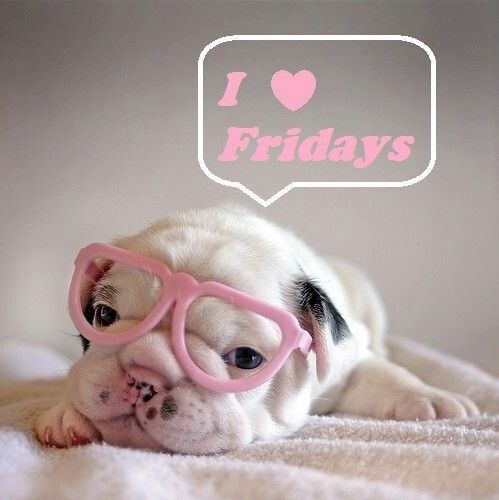 I love Fridays quotes quote puppy friday happy friday tgif days of the week friday quotes its friday: