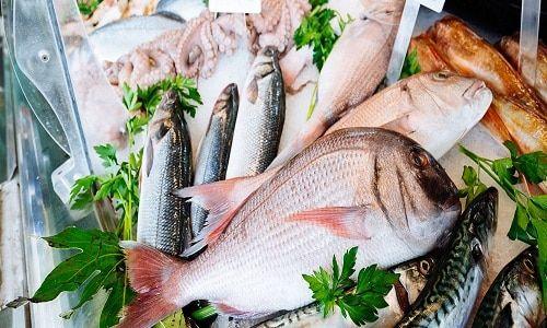 الذ انواع السمك للأكل أكثر من 30 نوع تعرف عليهم Fish Food Meat