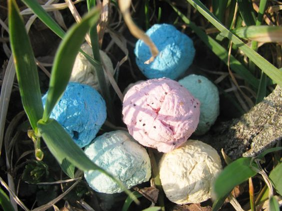 30 Easter Bunny Droppings (Seed bombs)- Plant to grow wildflowers ...