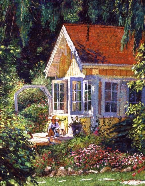 sunlight, garden & trees