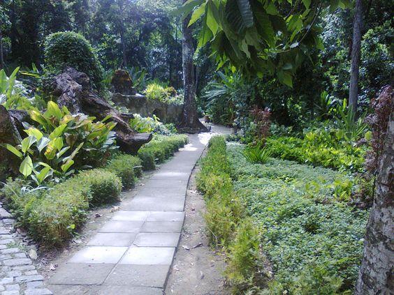 .Parque Lage