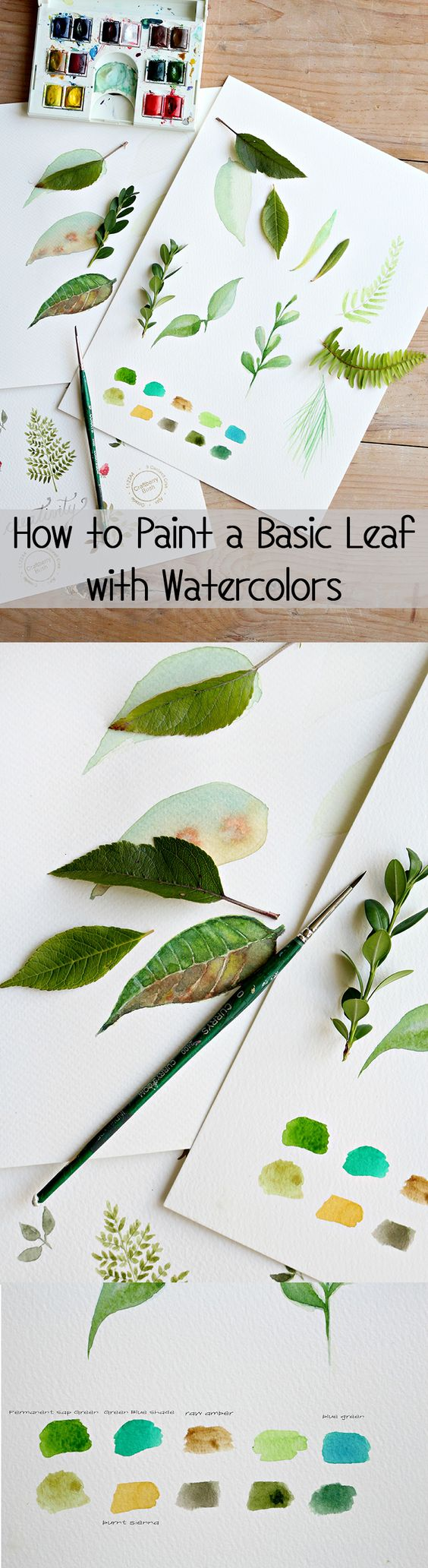 Such a beautiful and simple tutorial! Learn how to paint a basic leaf using water colors.: