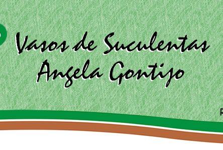 Vasos de Suculentas Angela Gontijo - O Projeto