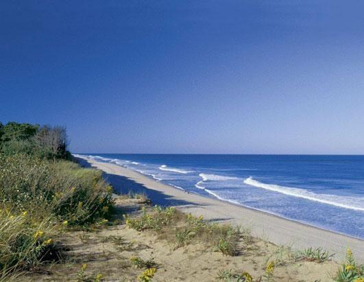 Classic Cape Cod beach!