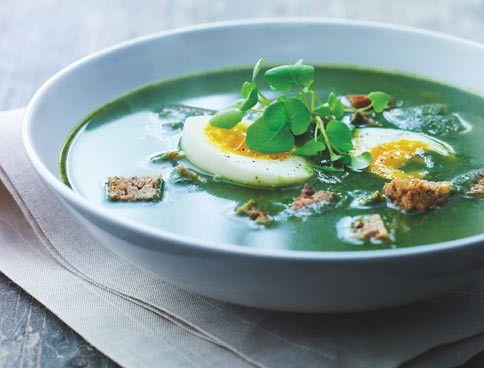 Die Brennnessel kann nicht nur schmerzhaft pieksen, ihre jungen Triebe sind auch voller Vitamine und Mineralien. Probieren Sie unsere Brennnessel-Suppe!