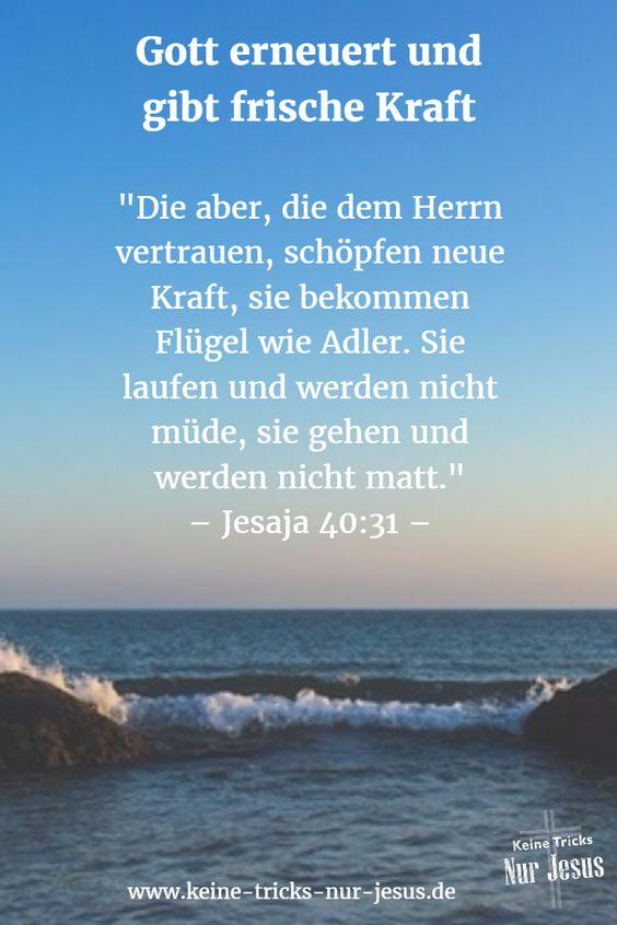 """Sagt uns Gott, daß wir immer kaputter und ausgebrannter werden? Nein, unser Schöpfer sagt uns etwas anderes: """"Die aber, die dem Herrn vertrauen, schöpfen neue Kraft, sie bekommen Flügel wie Adler. Sie laufen und werden nicht müde, sie gehen und werden nicht matt."""" Jesaja 40:31"""
