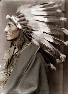 1900 photo of Chief Whirling Horse;  he performed with Buffalo Bill Cody.