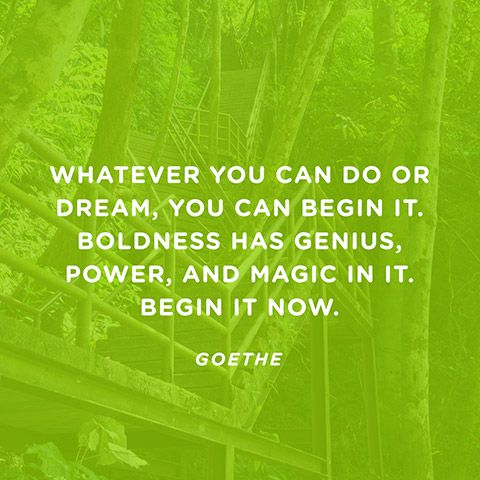 Whatever you can do or dream you can, begin it.Boldness has genius, power and magic in it. John Anster:
