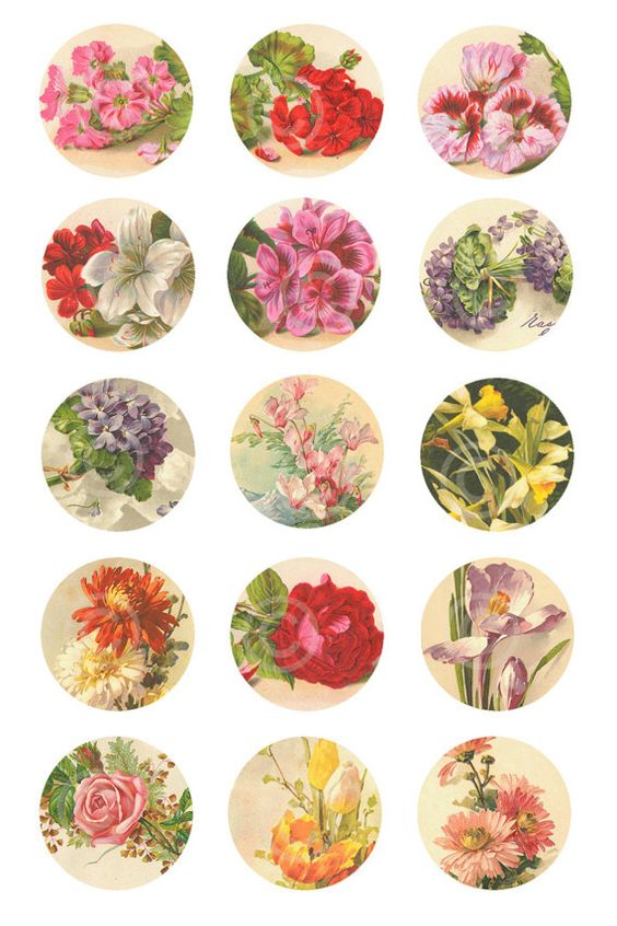 Vintage flowers and roses bottle cap images 1 inch circles for How to make bottle cap flowers