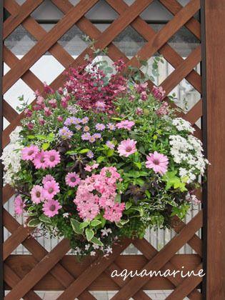 Hanging flower for Minami-Osawa flower fes. 2012
