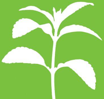 Estem integrats per agricultors i productors, restauradors i joves professionals de diferents sectors, un grup divers però tots amb un objectiu comú: fer-nos escoltar per evitar que desaparegui la biodiversitat alimentària i defensar la sobirania alimentària de tots els pobles.
