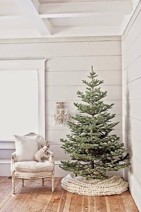 Charming simple farmhouse Christmas decor with a minimal Christmas tree in its natural glory, a chunky handknit tree skirt, vintage chair with French bulldog, and shiplap! #holidaydecor #shabbychic #farmhousechristmas #minimalchristmas #simplechristmas #bulldogs