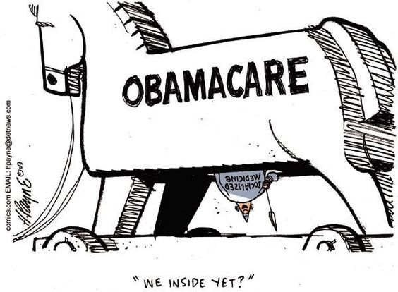 Essay about obama health care