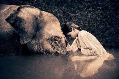 Elephant & Young Lady in Water
