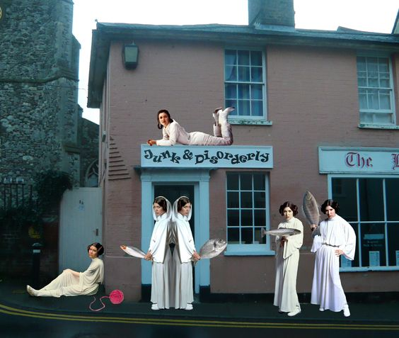 Wivenhoe cats disguise themselves as Princess Leia in ploy to take over town  www.facebook.com/katieperchanski @WivenhoeWatcher