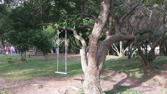 Parque da Luz - Florianópolis - SC
