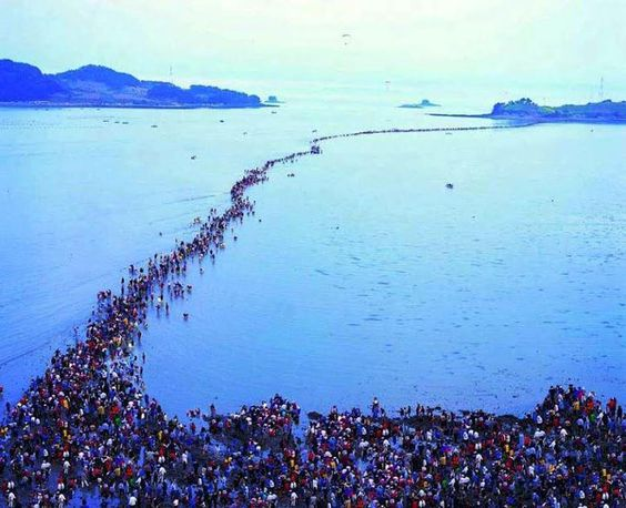 The Jindo Moses Miracle   One of the world's most amazing natural phenomenons, occurs twice a year for several hours. It creates a land path between Modo and Jindo Island (South Korea).   Facebook   1,000,000 Pictures