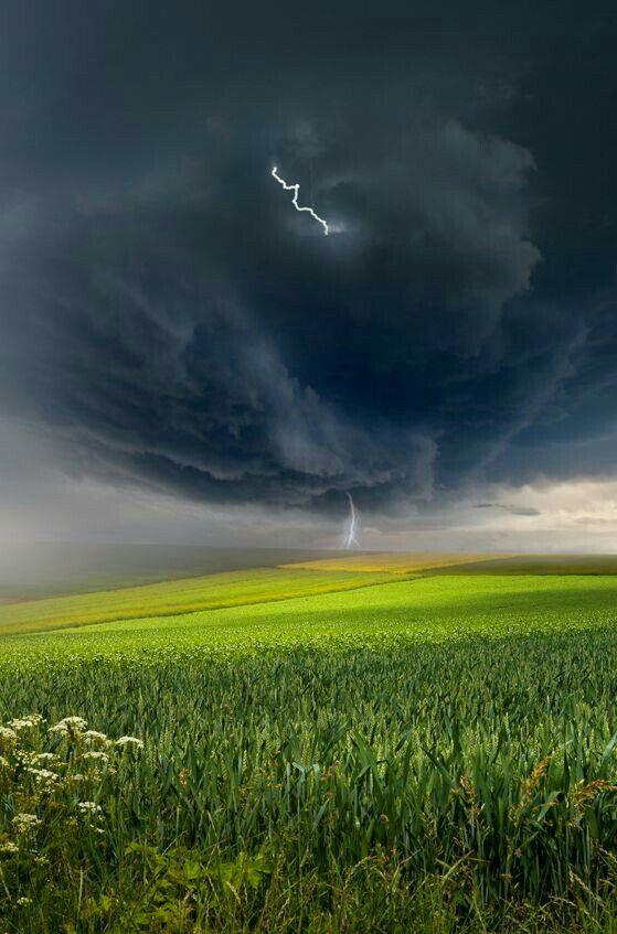 Para ter acesso ao mais belo que a natureza pode oferecer, é necessário amá-la e ter disposição.