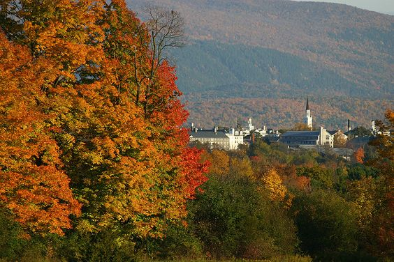 Middlebury College!!! @Eden Roessel :)