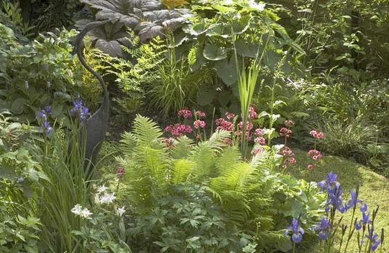 Bog garden- no use fighting the heavy clay soil!