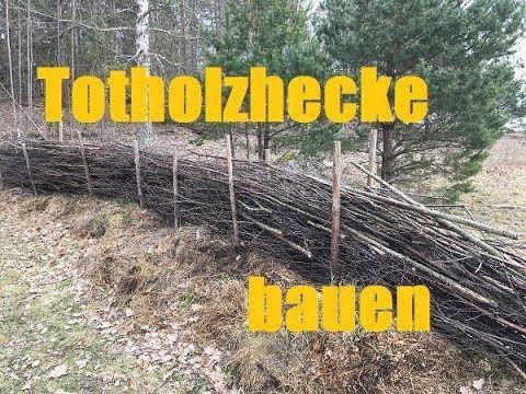 Bauen Mit Totholz Totholzhecke Und Rankgeruste Youtube Gartenarbeit Hecke Garten
