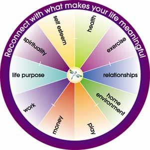 life coaching, look at each of these areas and score yourself out of 10 in each segment 0 being the centre 10 being the outer edge then join up the line around the circle  to see which areas of your life need more of your attention