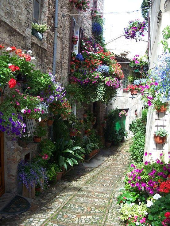 Spello, Italy urban garden lane