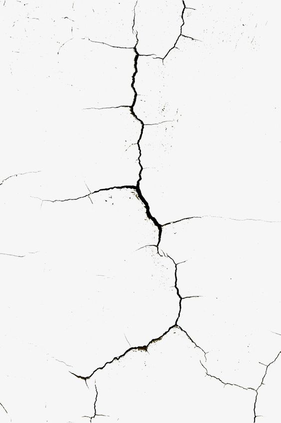 line,Wall cracks,Bifurcation,black,Wall cracks