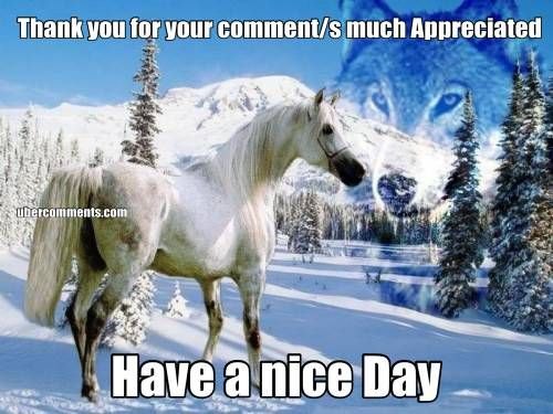Thank you for your comment/s much Appreciated Have a nice Day