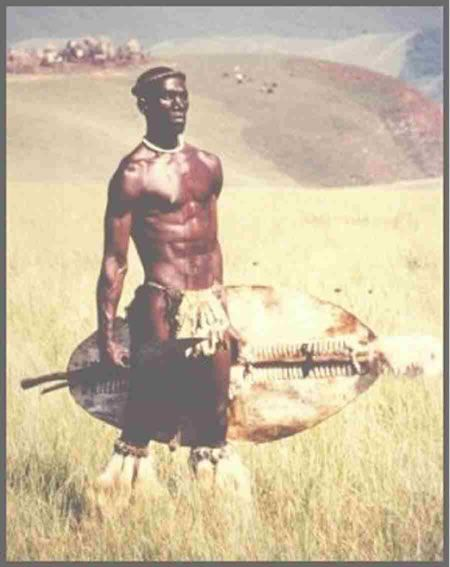 This picture is from the Shaka Zulu series...Shaka Zulu supposedly introduced cowhide shields, which were much stronger than the iron or wood shields used previously.
