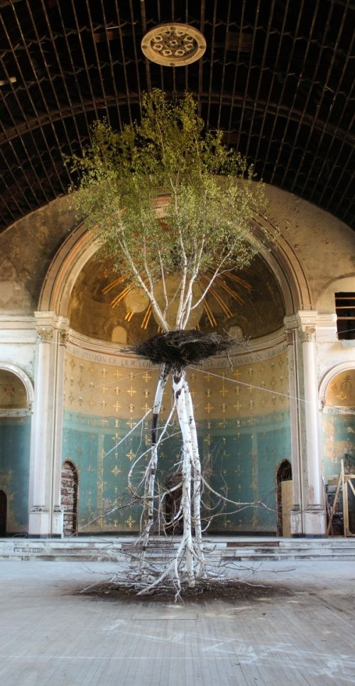 Global Tree Project: Hanging Garden by Shinji Turner-Yamamoto at Mount Adams' o Holy Cross Church, Cincinnati. (The top tree is alive!)