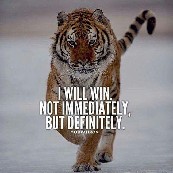 Motivation Motivational Inspire Inspirational Youarethestorm