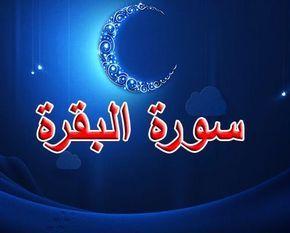 سورة البقرة كاملة على صفحة واحدة Neon Signs Quran Projects To Try
