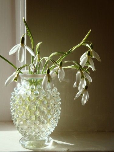 So pretty. Textured vintage vase with snowdrops. Applause!