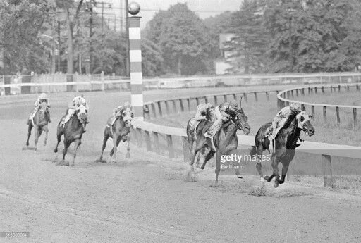 Bold Ruler with Eddie Arcaro up winning the 1957 Preakness Stakes...