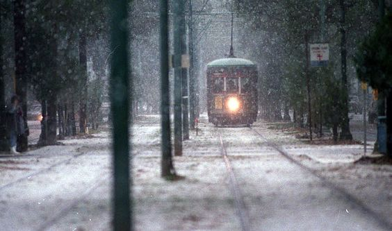 throwbackthursday white christmas new orleans snowfalls through the years snow falls snow and city