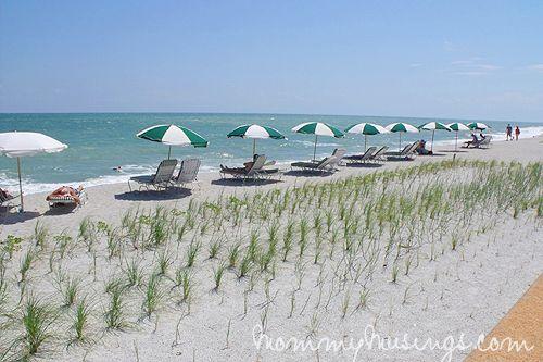 disney's vero beach resort - Google Search