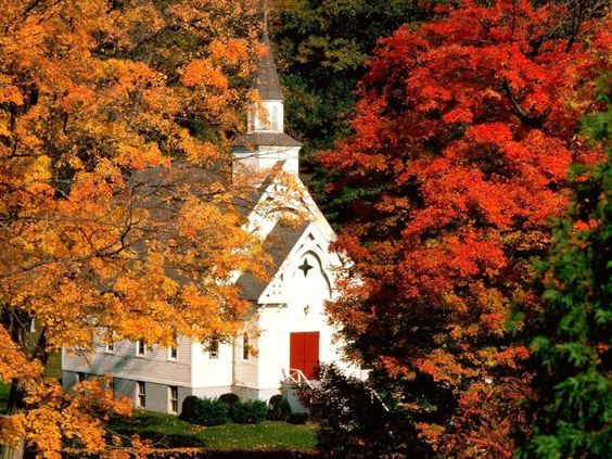 Adorable little white church in Autumn. Sweet.