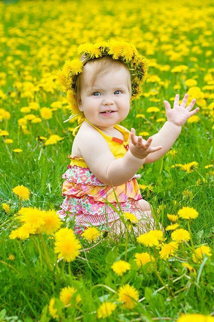 Cute little girl in the field of dandelions.