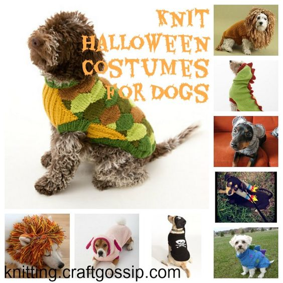 Free Crochet Patterns For Dog Halloween Costumes : Your dog, Costumes and Halloween costumes on Pinterest