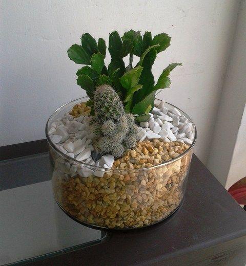 Maceta cristal terrario con cactus y arenas disponible en - Cactus en macetas pequenas ...