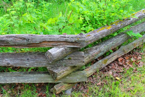 Wooden fence | Flickr - Photo Sharing!