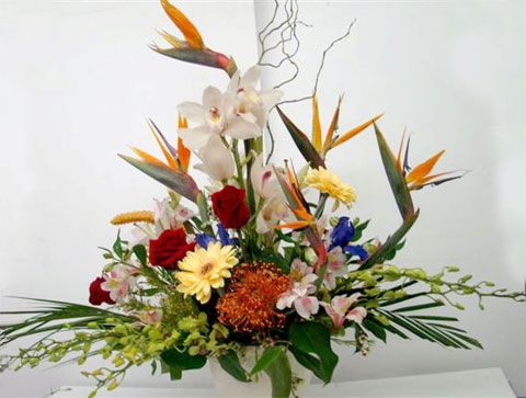 bird of paradise arrangement ideas | ... arrangement simply gracious and beautiful tropical arrangement