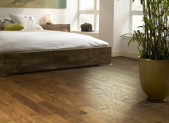 Canes tvs and flooring on pinterest for Shaw hardwood flooring
