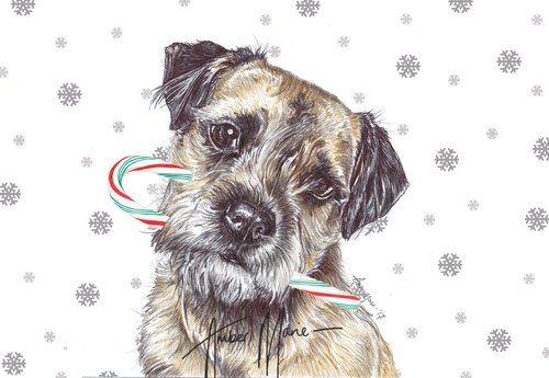Single Large Luxury Border Terrier Christmas Card Cc Border