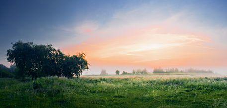 'Foggy+Dawn+2'+von+Maxim+Khytra+bei+artflakes.com+als+Poster+oder+Kunstdruck+$18.99