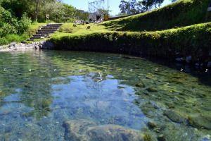 Ecológico Cachaco - Amaguaña