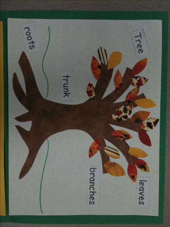 Project combining Science (Tree and labels), Writing, Math (count the leaves and labels) and Art (patterns).