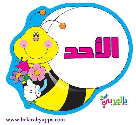 بطاقات أيام الأسبوع جاهزة للطباعة Arabic Kids Arabic Alphabet For Kids Alphabet For Kids